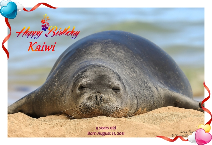 Kaiwi Birthday Card